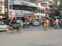 Ansari Road Old Delhi
